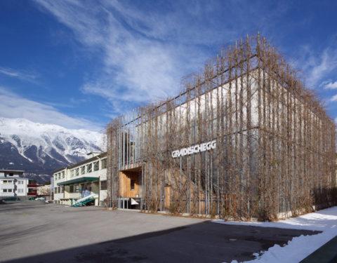 green facade gruene fassade green building